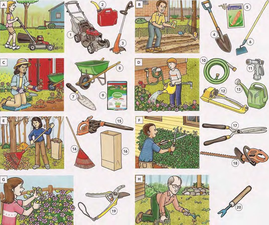 Gardening Tools and Actions