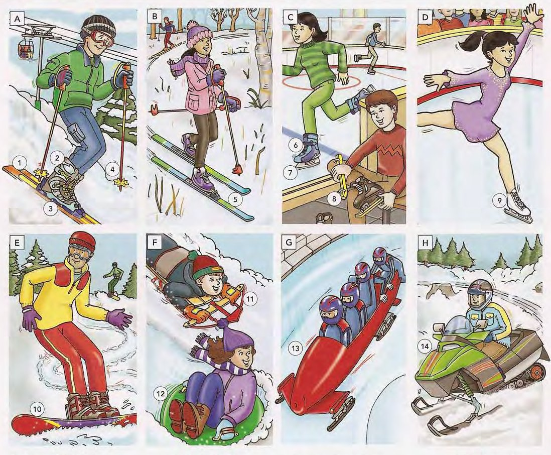 Winter Sports and Recreation
